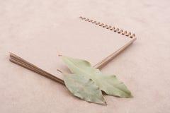 O caderno espiral e seca as folhas Fotos de Stock Royalty Free