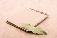 O caderno espiral e seca as folhas Imagem de Stock Royalty Free