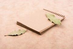 O caderno espiral e seca as folhas Fotografia de Stock