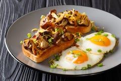 O café da manhã entusiasta do brinde fritado com cogumelos e queijo cheddar de shiitake serviu com close-up dos ovos em uma placa fotografia de stock royalty free
