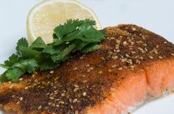 O cajun Salmon grelhado temperou a faixa com limão e cilantro Fotos de Stock Royalty Free