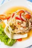O calamar eggs a salada picante fotos de stock royalty free