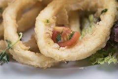 O calamari fritado soa 13close acima do tiro Imagens de Stock Royalty Free