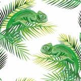 O camaleão sem emenda do teste padrão na banana sae do branco ilustração royalty free