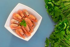 O camarão em uma placa quadrada é ao lado dos verdes Foto de Stock Royalty Free