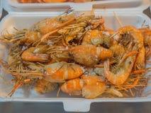 O camarão grelhado fresco cozeu o sal colocado em uma caixa da espuma para a venda Foto de Stock Royalty Free