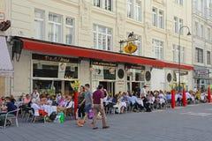 O camelo preto Viena Fotografia de Stock Royalty Free