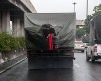 O caminhão transportou as madeiras imagem de stock royalty free