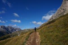 O caminhante aprecia a fuga e a vista maravilhosa ao cenário dos mountaines da dolomite/ao piatto/para o sul Tirol do sasso Fotografia de Stock Royalty Free