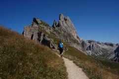 O caminhante aprecia a fuga no parque natural de Geisler do puez em picos do geisler Fotografia de Stock