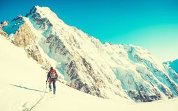 O caminhante com trouxas alcança a cimeira do pico de montanha Liberdade do sucesso e realização da felicidade nas montanhas Engo imagem de stock