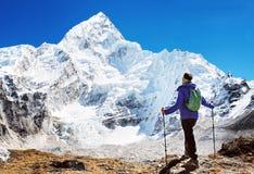 O caminhante com trouxas alcança a cimeira do pico de montanha Succes fotografia de stock
