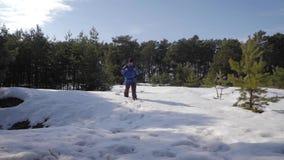 O caminhante do homem da aventura na roupa e na trouxa mornas que anda no caminho coberto de neve no homem da floresta A do pinho vídeos de arquivo