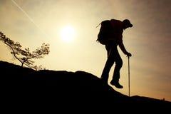 O caminhante do homem faz abaixo da etapa, dos pés nas botas e dos polos Dia ensolarado na rocha do pico de montanha Bonsais pequ Imagem de Stock Royalty Free