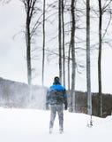 O caminhante do montanhista está indo para a parte superior de uma montanha em um blizzard extremo Tempestade da neve na floresta fotografia de stock
