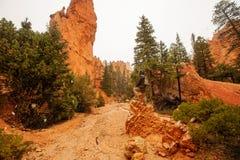 O caminhante visita o parque nacional da garganta de Bryce em Utá, EUA imagens de stock