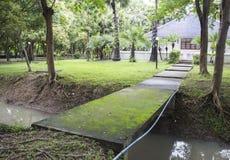 O caminho através da lagoa Imagem de Stock