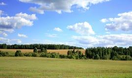 O campo é moldado por florestas Imagens de Stock Royalty Free