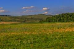 O campo coberto de vegetação nos montes Foto de Stock