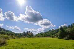 O campo da grama com madeiras e aperfeiçoa o céu azul fotos de stock royalty free