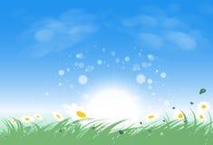 O campo de grama da paisagem com elevação do sol brilha brilhantemente, as folhas e ilustração do vetor
