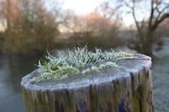 O campo de Sussex no inverno Fotos de Stock