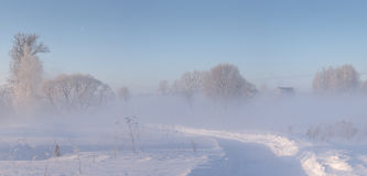 O campo do inverno coberto com a neve e o hoar na manhã iluminou a sagacidade Fotografia de Stock Royalty Free