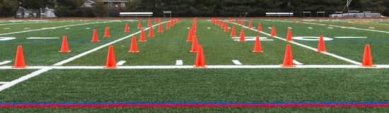 O campo do relvado e levanta para a prática da velocidade e da agilidade Imagens de Stock Royalty Free