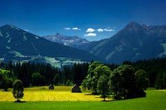 O campo em torno da cidade de Ramsau am Dachstein Imagem de Stock Royalty Free