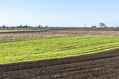 O campo recentemente arado na mola está pronto para o cultivo Região de Zhytomyr, Ucrânia Fotos de Stock Royalty Free