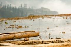 O canal de bambu leva a água fresca entre campos do arroz, Sapa, Vi fotografia de stock