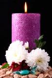 O candel roxo Imagem de Stock
