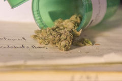 O cannabis derrama o recipiente Imagem de Stock Royalty Free