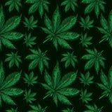 O cannabis folheia teste padrão sem emenda imagens de stock