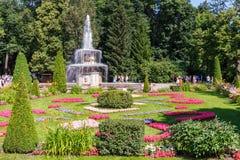 O canteiro de flores e a fonte nomearam a bacia no parque, Petergof de Romano Fotos de Stock
