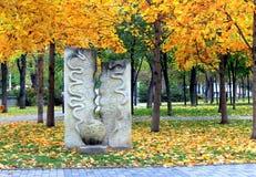 O canto de um parque do outono com sakura amarelo sae Fotos de Stock Royalty Free