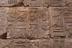 O caráter do hieróglifo egípcio na pedra imagem de stock