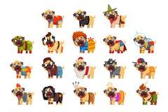 O caráter engraçado bonito do cão do pug em trajes engraçados coloridos ajustou, vector ilustrações ilustração royalty free