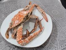 O caranguejo cozinhado no prato Fotografia de Stock Royalty Free