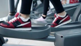 O cardio- exercício, pés da pessoa vai em instrutores elípticos no clube desportivo vídeos de arquivo