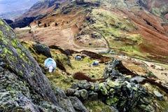 O carneiro de Herdwick no abate Fotos de Stock Royalty Free