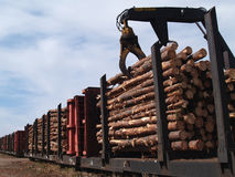 O carregamento entra um Railcar Imagem de Stock Royalty Free