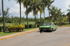 O carro americano do vintage verde monta ao longo de uma fileira de palmeiras altas fotografia de stock royalty free