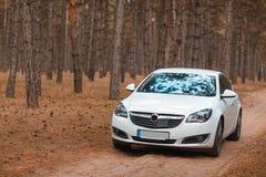 O carro branco na floresta fora fotografia de stock