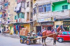 O carro com vegetais, Alexandria, Egito Fotografia de Stock