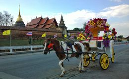 o carro do cavalo Foto de Stock Royalty Free