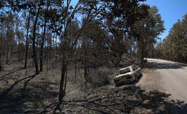 O carro queimou-se para baixo por um incêndio florestal perto da estrada - Pedrogao grandioso Fotos de Stock Royalty Free