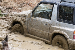 O carro roda dentro a lama na floresta Imagens de Stock
