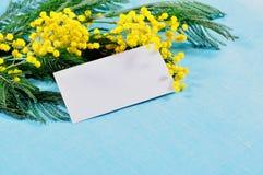 O cartão branco com espaço livre para o texto na mimosa macia amarela brilhante floresce na toalha de mesa de linho azul Imagens de Stock