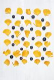 O cartão com um ornamento das folhas de um botão de ouro com uma uva-do-monte Fotografia de Stock Royalty Free
